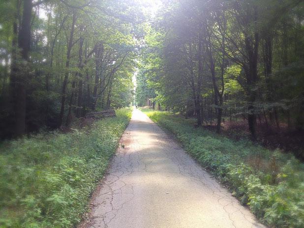 auf geraden Wegen in den Wanderflow