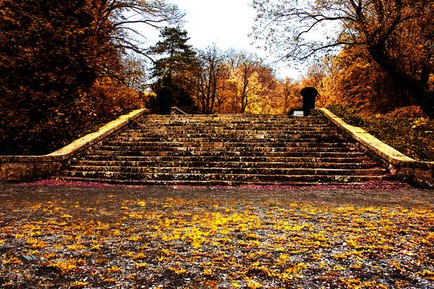 Schlosspark Aufgang zum Niedersachsen Restaurant