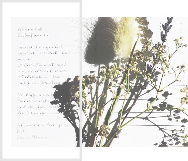Corona Postkarte mit Trockenblumen