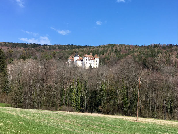 by the way. schloss kainberg.