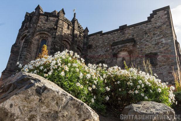 Edinburgh,Scottish,National,War,Memorial castle,schottland,old,town,herbst,oktober,tipps,sehenswürdigkeiten,schloss.