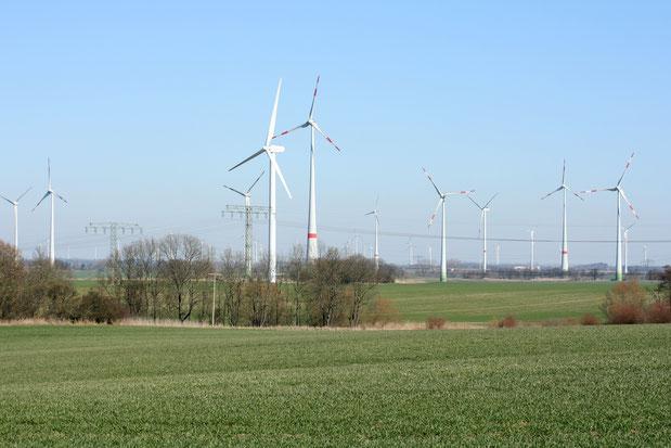 Windpark - NABU/Eric Neuling