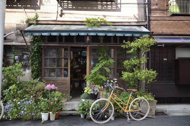 東京バイク tokyobike LITE   tokyobikeライト シングルスピード