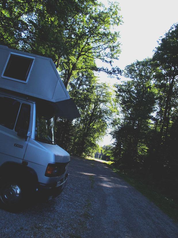 camion mercedes bigousteppes route forêt