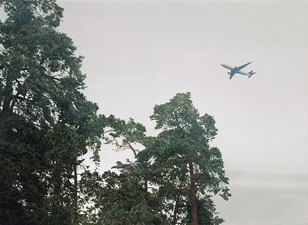 KIEFERN, FLIEGER | 2011 | Arcyl auf Nessel | 40 × 60 cm