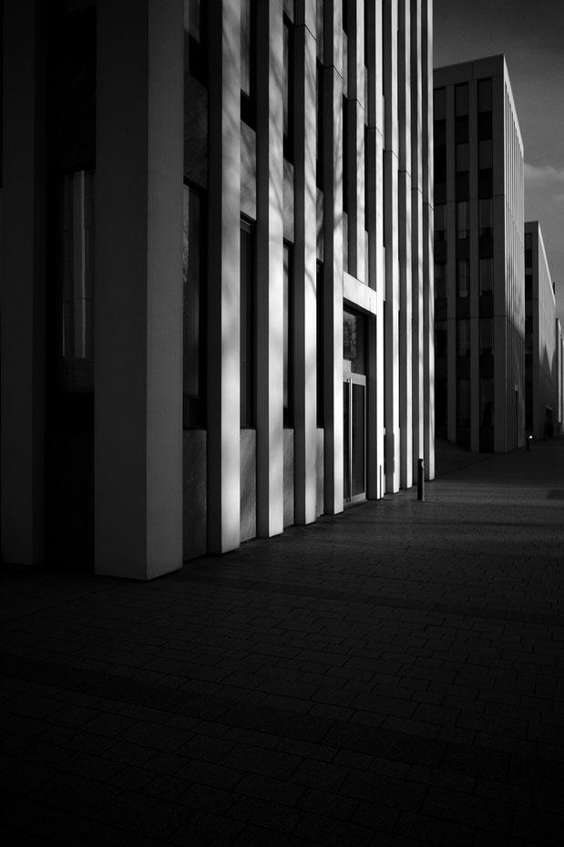 Bonn, monocrom, schwarz-weiss, black and white, Schwarzweissfotografie, kreative Fotografie, Fototipps, Ricoh GRiii, Ricoh GR3