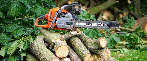 Tree Felling Worcester