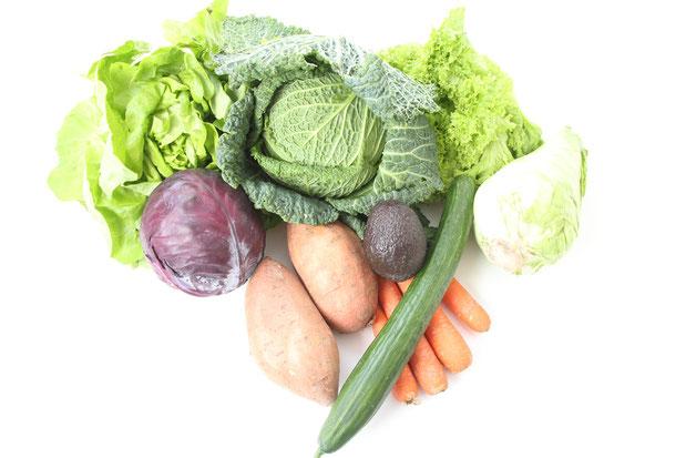 Ernährungsberatung Praxis Erkelenz