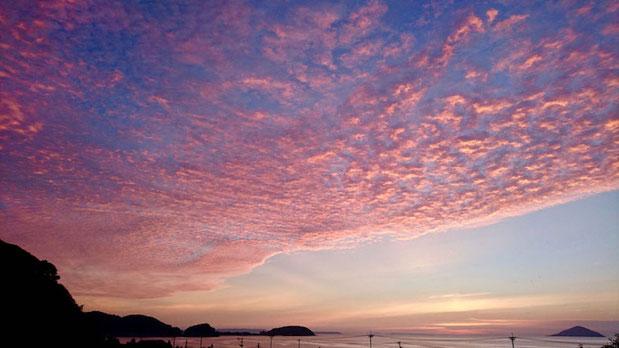 福岡の夕日スポット神社、ピンク色の夕焼け雲 夕焼け空。Pink sunset at Chinkaiseki Shrine in Fukuoka