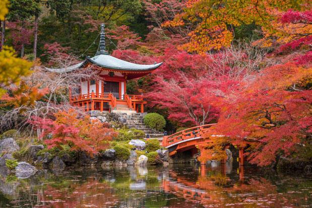 LE DAIGO-JI.  COMPLEXE TEMPLIER BOUDDHISTE DE L'ECOLE SHINGON, PATRIMOINE MONDIAL DE L'HUMANITE. 22 Daigohigashiojicho. Fushimi Ward Préfecture Tokyo 601-1325
