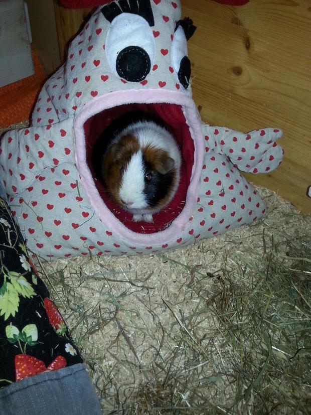 Frieda hat das Kuschelmonster erobert