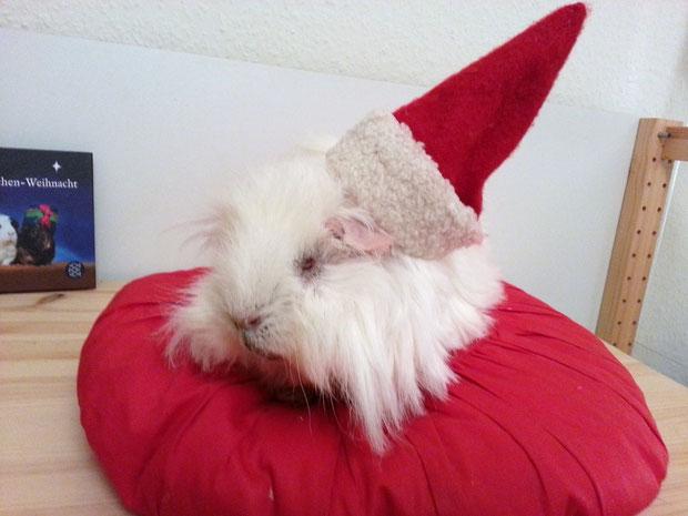 Tschüssmuig Schweihnachten! Ich kann dich zwar nicht sehen, aber auf die Geschenke zum nächsten Schweihnachtsfest freue ich mich jetzt schon.