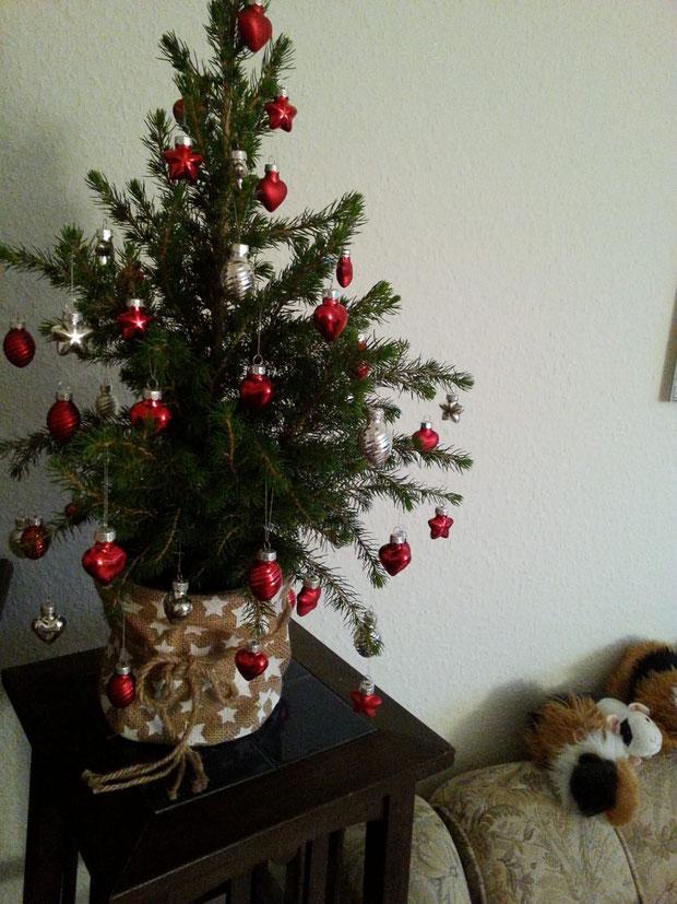 Der Schweihnachtsbaum