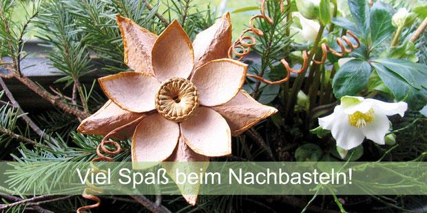 Weihnachtsstern aus Eierkartons - schnell gebastelt ©Eschenblatt-Verlag