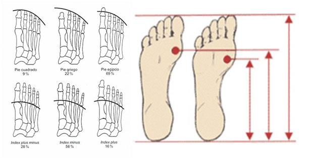 Diferentes tipos de pies
