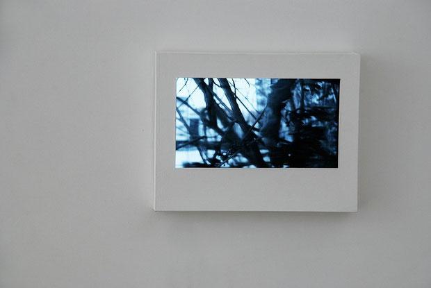 Fenster, Installation aus einer Kamera und einem Monitor