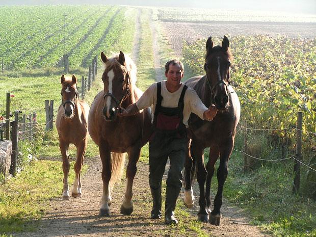 Urs mit unseren 3 Pferden