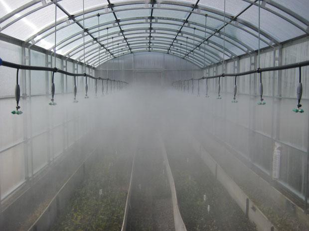 Туманообразующая установка