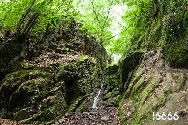 Naturpark Ruppertsklamm Lahnstein