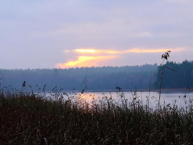 Krummer See im Winter, Sonne