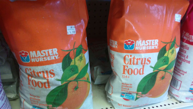 Master Nursery Citrus Food
