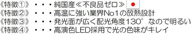 ANDY-LDS 重塩害LED特徴