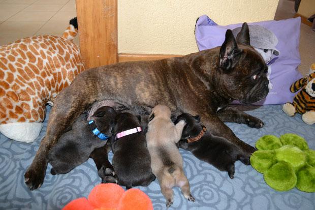 22 mars, petite famille fait les 4 heures :-)