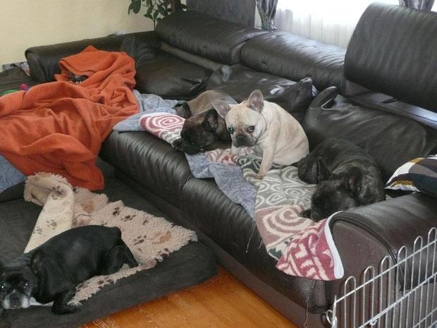 oui oui, on ne devrait pas être sur le canapé :-)