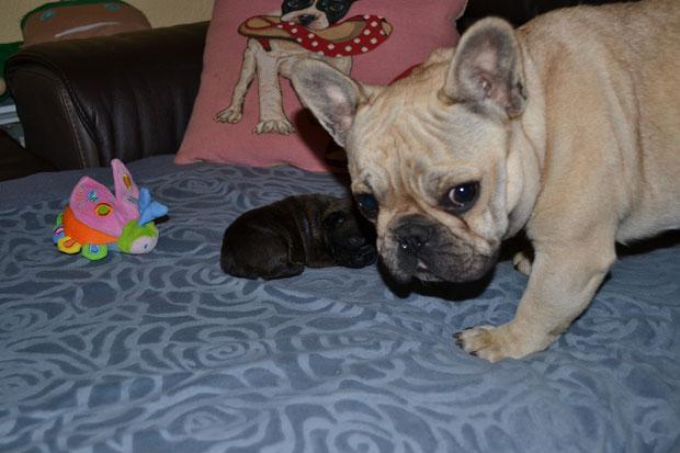 je m'entraîne à devenir maman :-)