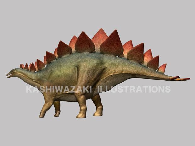ステゴサウルス側面図