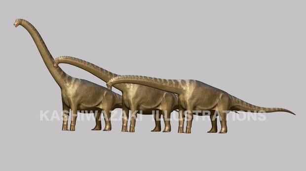 ブラキオサウルスの首復元の経緯