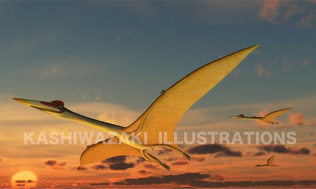 翼竜は恐竜の仲間なの?
