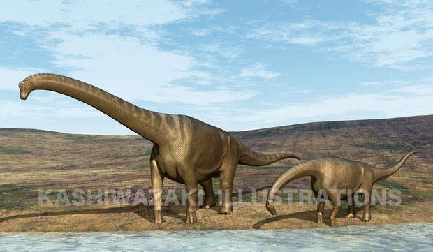 ブラキオサウルスの親子が水飲み