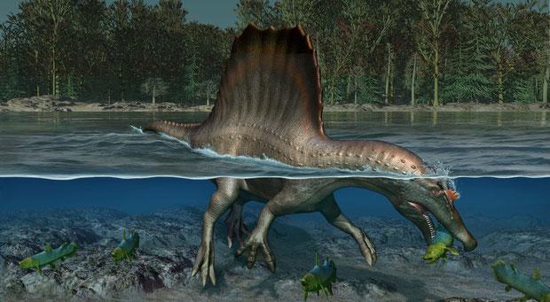 恐竜は泳ぐことができたの