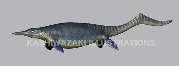 ウタツサウルス