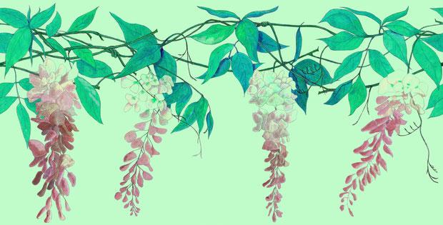 Wisteria in Sage colour, Contemporary Wallpaper Border by www.FiorentiniDesign.com