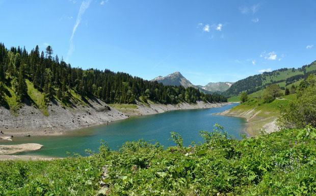Teilansicht des Lac de l'Hongrin