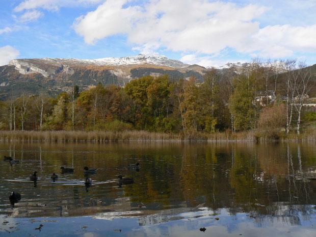 Lac du Mont'Orge