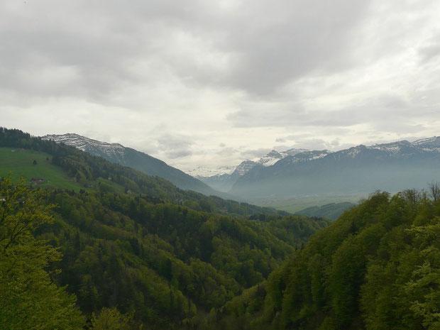 Aussicht von Rieden (im Vordergrund das Steinenbachtobel)