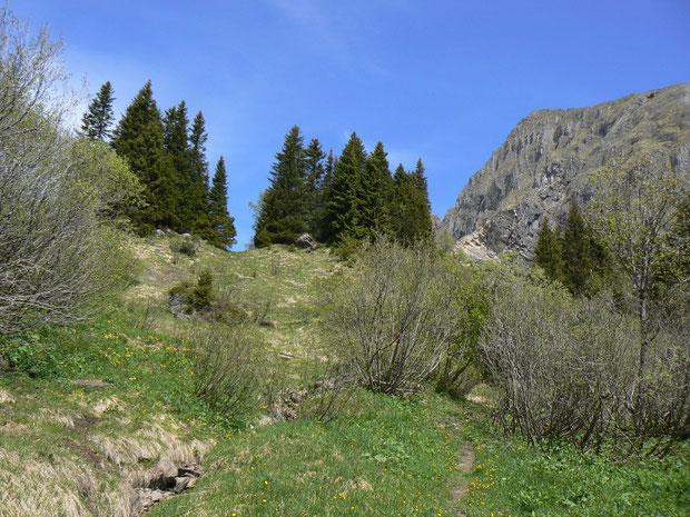 Aufstieg zur Alp Palfris