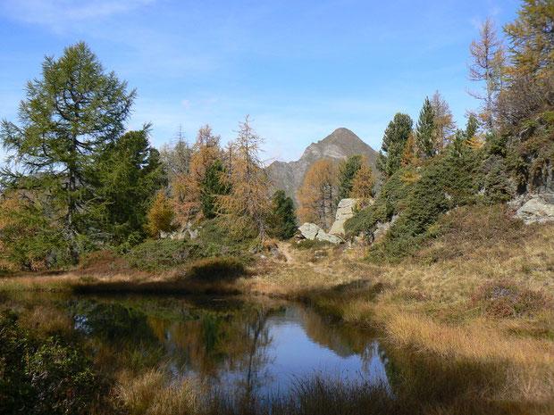 Moorgebiet beim  Aufstieg zum Forcapass im Herbst