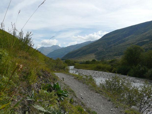 Reuss mit alpinen Matten und Auenwäldchen
