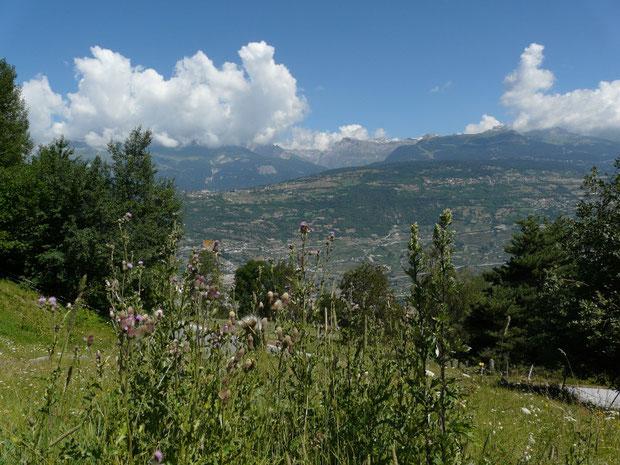 Naturwiese zwischen den Ortschaften Loye und Daillet