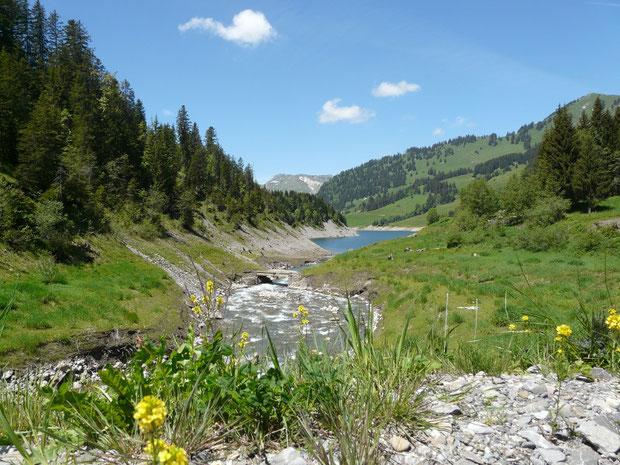 Beim Lac de l'Hongrin