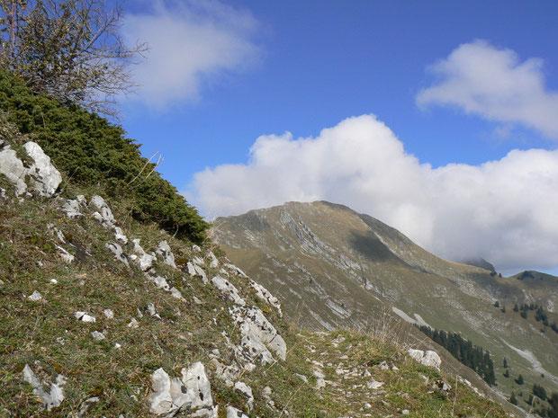 Weg zum Col de Lys (im Hintergrund der Dent de Lys)