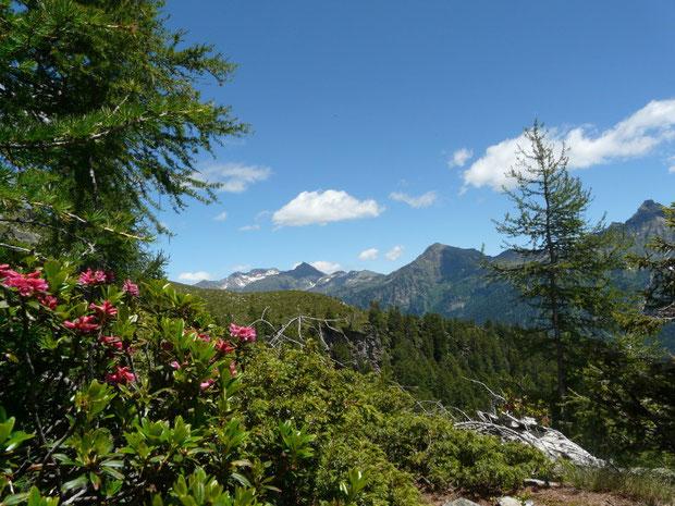 Alp di Rossiglion GR