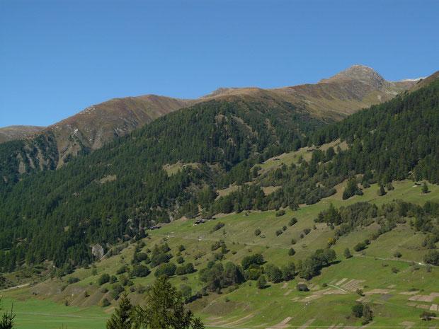 Höhenwanderweg bei Obergesteln (von der anderen Talseite aus fotografiert)