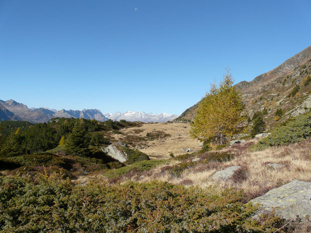 Alpe di Chièra
