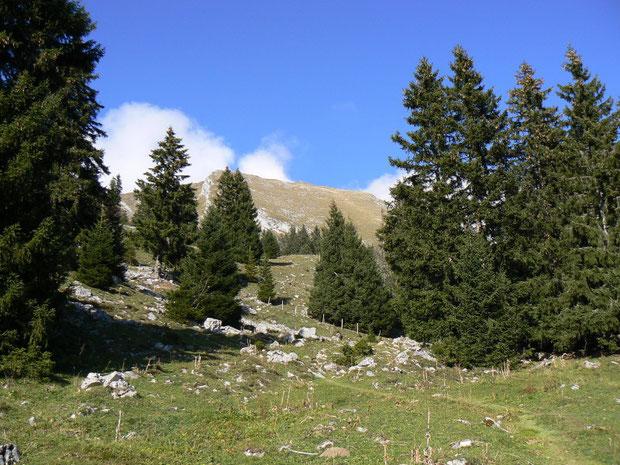 Abstieg nach Teraula d'Avau (im Hintergrund der Dent de Lys)