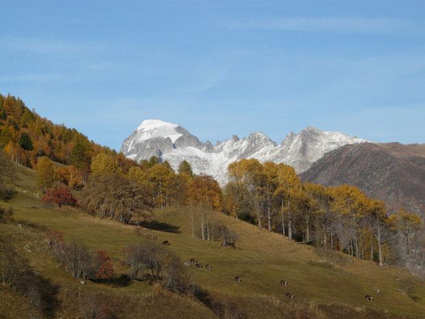 Galenstock bei Ulrichen im Herbst